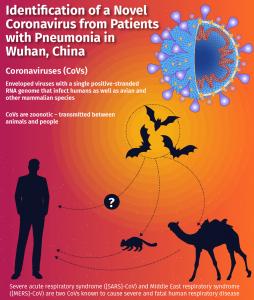 Novel Coronavirus identification from Chinese Medical Journal